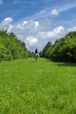 Beautiful lush green grass surrounded with tall and thick shrubbery, blue sky with white clouds at the horizon, woman riding on white horse in the distance 写真素材