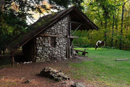 Small stone cottage in the woodland area, surrounded with trees and one horse grazing on the grass in the backround