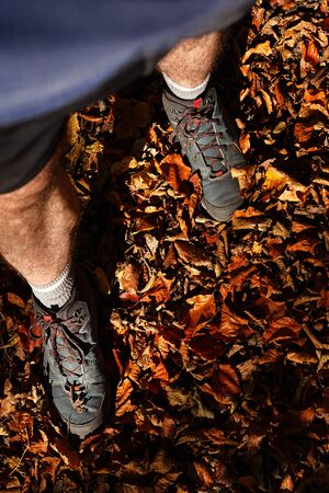 Male legs in hiking boots standing in big pile of fallen leaves in autumnal colors