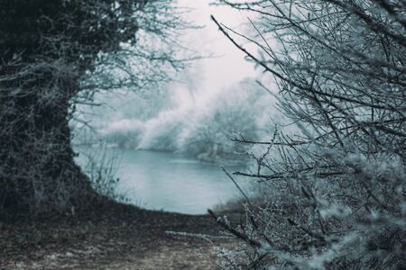 Frozen snowy landscape, ravine covered in frost and fog, frozen lake water in distance, bush branches in front