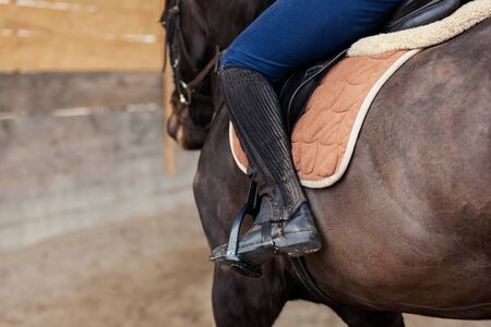 Closeup of a woman in riding gear sitting in a saddle on a brown horse on the training ground Reklamní fotografie
