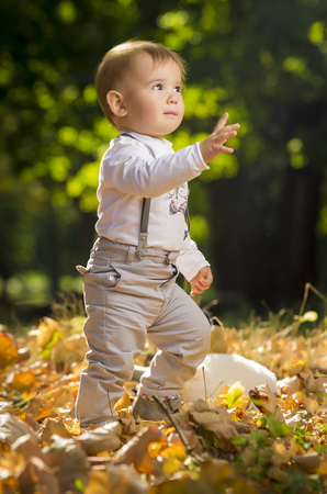 Two years old boy playing in park