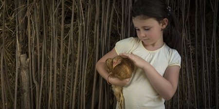 Seven years old girl in countryside holding a chick. Stock Photo