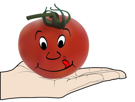 human offer a tomato Vector