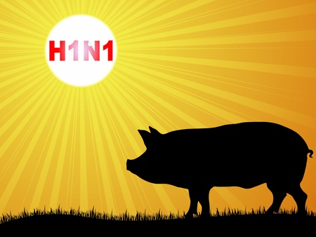 h1n1 vaccine: Swine flu virus vector illustration