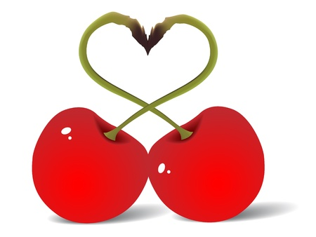 Two red cherry love vector illustration Vector