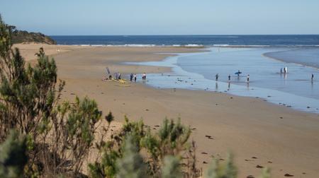 surfers: Anglesea beach with surfers victoria australia