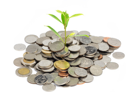 plant growing out of silver coins isolated on white Stock Photo