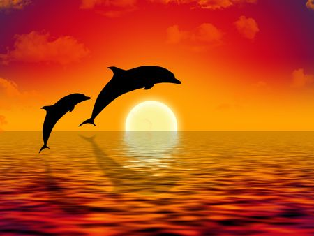 illustration of two dolphins swimming in sunset illustration