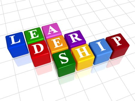 3d colour boxes with text - leadership, word Stock Photo - 2505957