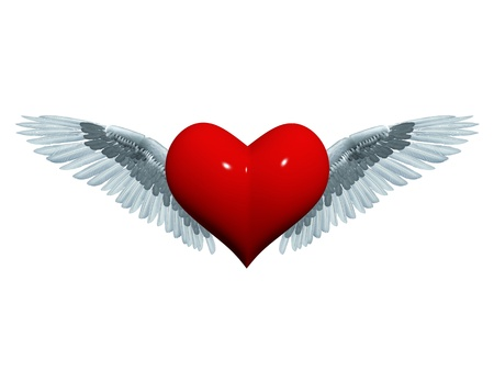 wing span: 3d red heart with white-grey wings like angel