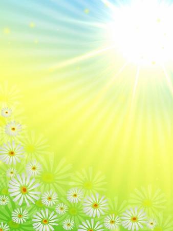 春天的花朵和太阳光芒在蓝色,黄色和绿色