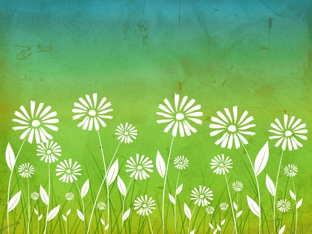 spring flowers white daisy over green old paper background photo
