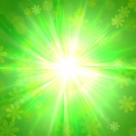spring flowers and sun rays over green background Stock Photo - 13009632
