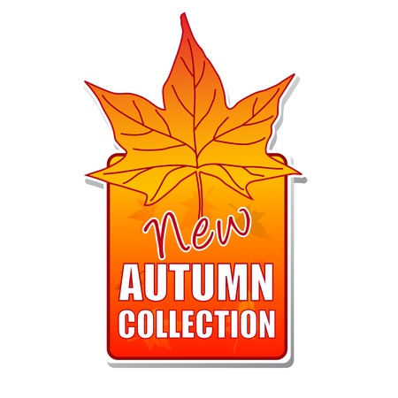 new autumn collection - orange label with text and leaf photo