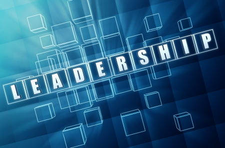 professionalism: leadership text in 3d blue glass cubes, business concept