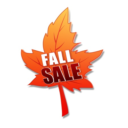 fall sale - text in 3d orange leaf, business concept