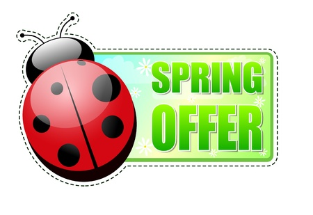 spring offer banner - text in green label with red ladybird and white flowers, business concept Stock Photo - 17777612