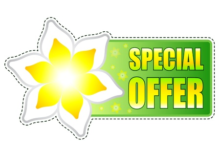 spring special offer banner - text in green label with white yellow flowers, business concept Stock Photo - 17777610