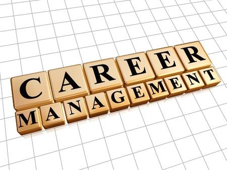 la gestion de carrière - texte dans cubes d'or 3d avec des lettres noires, concept d'entreprise de croissance de la profession