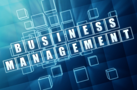 moneymaker: business management - text in 3d blue glass cubes with white letters, business success concept Stock Photo