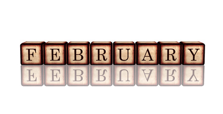 month february - text in 3d retro wooden cubes with letters and reflection, calendar concept element photo