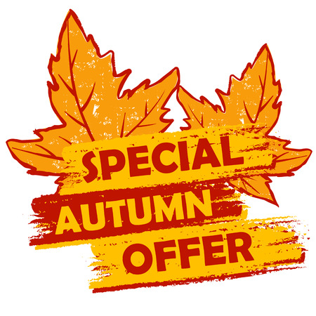 selling off: special autumn offer banner - text in orange and brown drawn label with leaf signs, business seasonal shopping concept