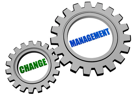 adaptation: change management - text in 3d silver grey metal gear wheels, business organize adaptation concept words