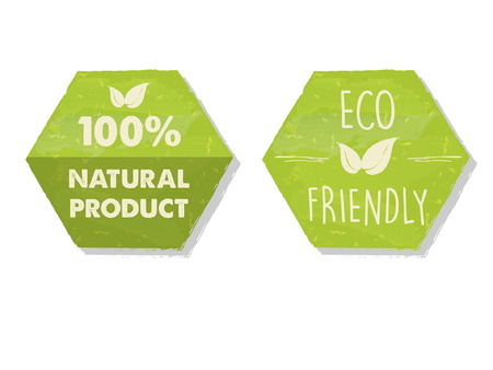 100 percent natural and eco friendly with leaf sign in green hexagons labels, bio ecology concept, vector