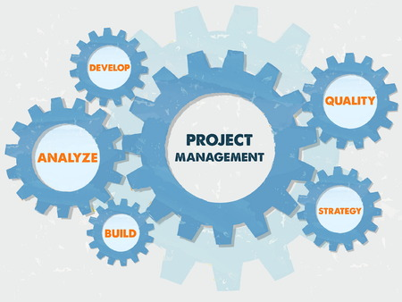 constructive: project management, develop, analyze, build, quality, strategy - text in blue grunge flat design gear wheels, business growth concept words, vector Illustration