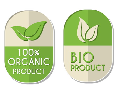 elliptic: 100 percent organic and bio product with leaf signs banners, two elliptic flat design labels with text and symbol, business eco concept, vector