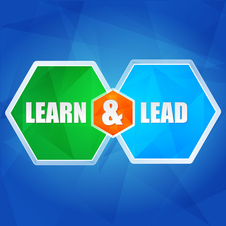 business education: learn and lead - business education concept words in color hexagons over blue background, flat design, vector