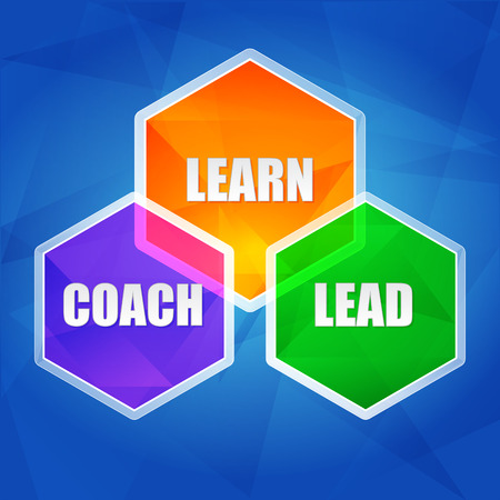 proficient: learn, coach, lead - business education concept words in color hexagons over blue background, flat design, vector