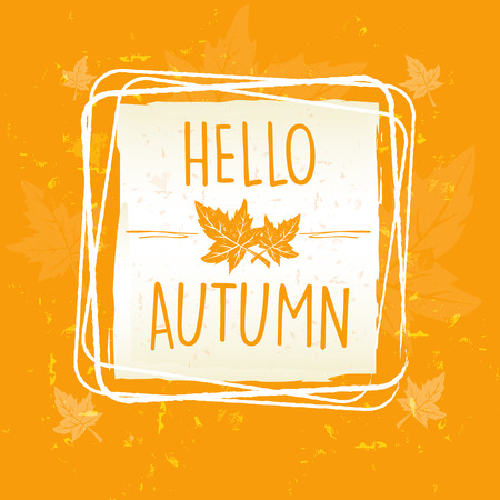 hello autumn in frame with leaves over yellow orange old paper background, seasonal concept, vector
