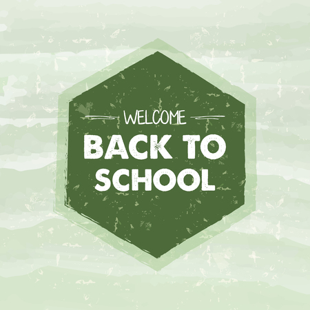 college girl: welcome back to school text in hexagon frame over green old paper background, education concept, vector