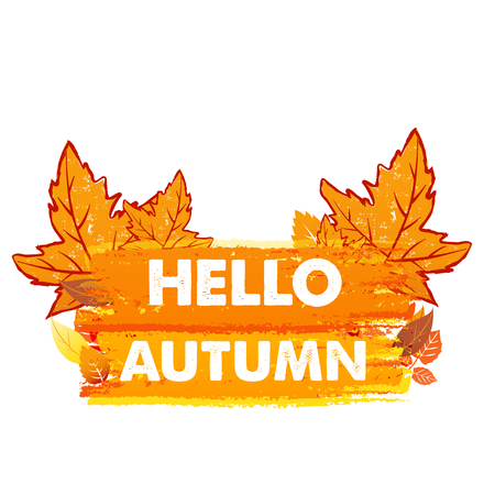 hello autumn banner - text in yellow and orange drawn label with leaf signs, seasonal concept, vector Illustration