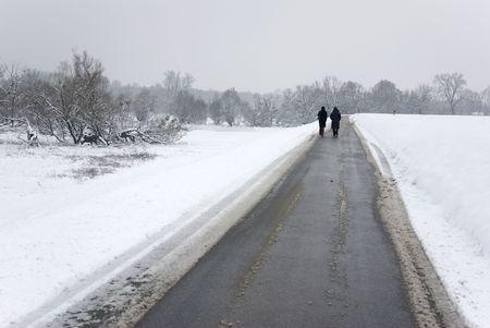 beautiful, white, winter landscape in the nature.