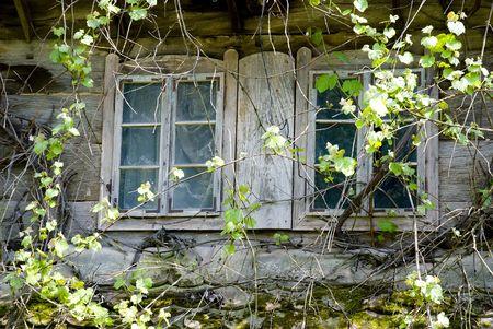 ventanas abiertas: Viejos abandonados casa de madera en las zonas rurales de Croacia.
