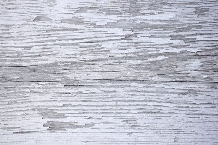A wooden surface with cracks and peeling white paint. Texture. Background. Close-up. Selective focus. Copy space. Reklamní fotografie
