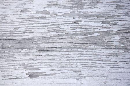 Drewniana powierzchnia z pęknięciami i łuszczącą się białą farbą. Tekstura. Tło. Zbliżenie. Selektywne skupienie. Skopiuj miejsce. Zdjęcie Seryjne