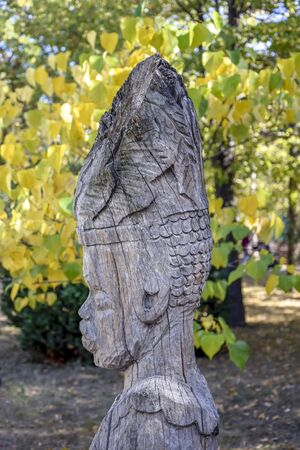Old wooden tree sculpture in autumn park, side view of African man. Close-up. Vertical photo. Banco de Imagens