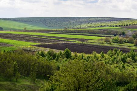 Rural, rustic landscape with green and freshly plowed fields agricultural fields, trees and grass on spring hills. Picturesque spring view. Beautiful natural background.