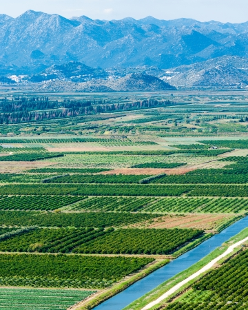 neretva: Beautiful Neretva valley in southern Croatia with numerous crop fields and hills in distance
