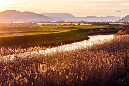 fertile: Sunset illuminates the fertile fields and water canals