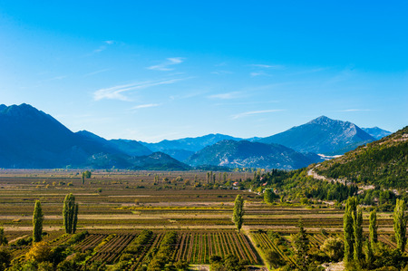 fertile: Beautiful day over the fertile plains in southern Croatia