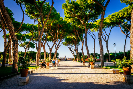 giardino: ROME, ITALY - OCTOBER 30: Orange garden, Giardino degli Aranci, in Rome, Italy on October 30, 2014.