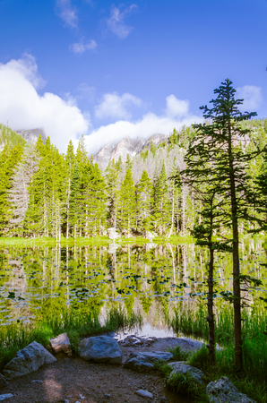 glacial: landscape of a glacial lake with sorrounded by  forrest that mirrored in the water surface