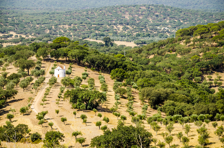 aereal: panorama of landscaped  countryside with a traditional white house. alentejo. portugal