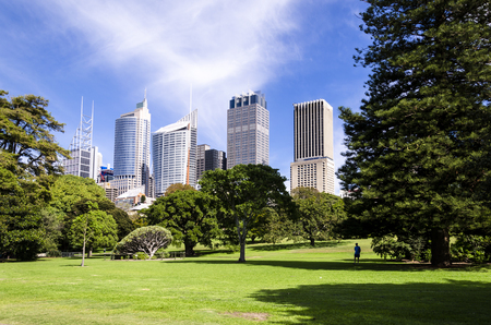 view of the downtonw of sydney from the park of the bay. australia.