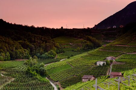 landscape of secret part of dolomites in the italian alps with grapes cultivation. cembras valley. italy